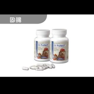 寵特寶 固腸 GI Protect 60顆