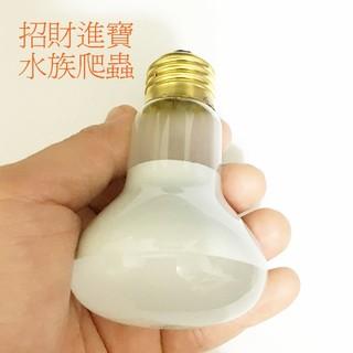 25W 50W 日燈太陽燈聚熱燈泡 烏龜陸龜爬蟲寵物箱蜥蜴刺蝟鳥鼠取暖燈保溫