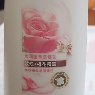 全新現貨  Dove 水潤植萃洗髮乳南法 玫瑰+橙花精華