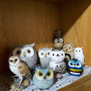 貓頭鷹 收藏  擺設 裝飾