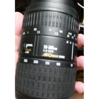 北門王 鏡頭 sigma apo for Nikon 70~300. D