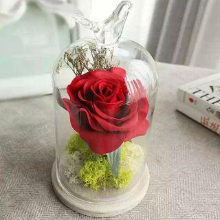 玫瑰永生花玻璃罩微景觀-FFI1