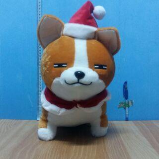 阿秋夾娃娃 柴犬 聖誕