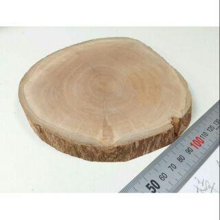 樟木原木底座,適合放置晶洞