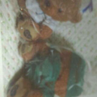 Cnblue熊兩個