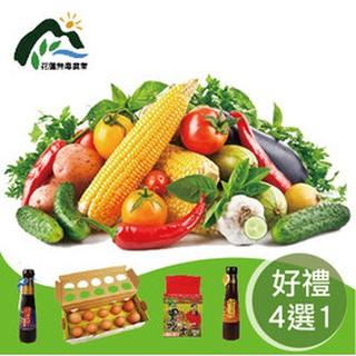 花蓮壽豐•有機蔬菜箱x在家就有好食材(加贈好禮4選1)