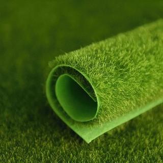 ➤當日出貨 草皮攝影底布/草皮布/攝影道具/人工草皮/小型/苔蘚/30x30cm