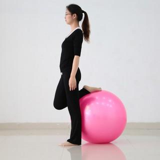 75公分健身運動健身瑜伽健身球