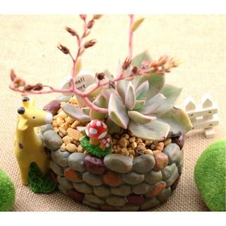 長頸鹿鵝卵石花盆(單入)微景觀多肉植物苔蘚盆栽擺件 DIY花盆裝飾品 園藝造景