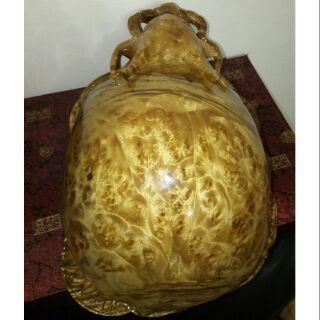 黃金樟 樹瘤 木雕 龍龜 擺件 藝術品 收藏品
