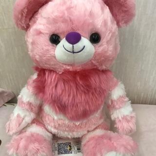 絕版三代大學熊妙妙貓s號 可愛臉