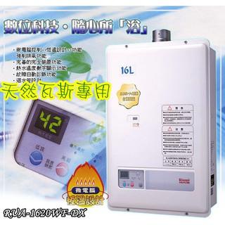 Rinnai林內 RUA-1620WF-DX 16公升 數位恆溫 強制排氣 節能熱水器 天然瓦斯用 歡迎自取