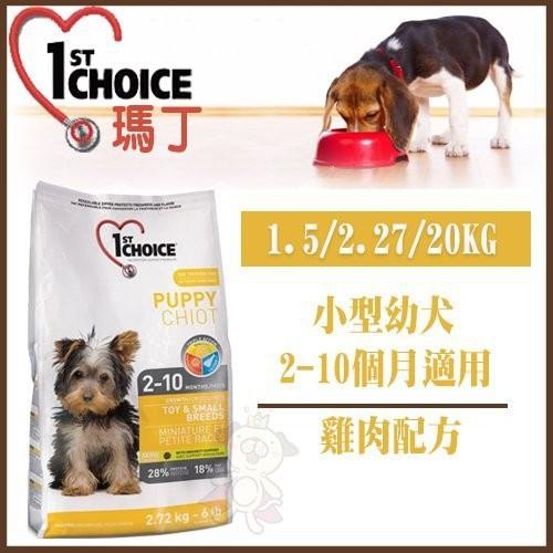 *WANG*瑪丁小型幼犬|小型成犬1.5kg