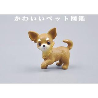 【老頑童玩具屋】透明袋裝 寵物扭蛋 吉娃娃玩具公仔 蝴蝶犬 模型玩具 桌面裝飾品 / Egg-吉娃娃