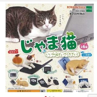 勿擾貓 全系列扭蛋