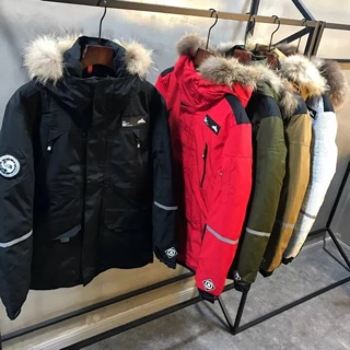 THE NORTH FACE 機能性連帽羽絨外套