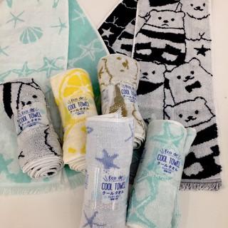 日本製 Eco de COOL TOWL 涼感毛巾 星星 北極熊