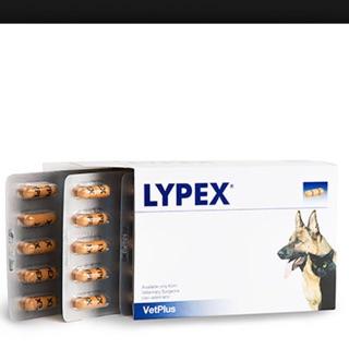 VetPlus 多酶素LYPEX 品 不用等跑單幫!當天出貨!一盒1970 二盒3950