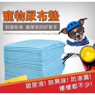 ~24H 出貨~ 寵物尿布墊防臭吸水寵物尿布墊尿墊狗狗尿片吸水尿布刺蝟尿布墊廁所