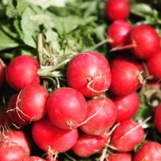 《農來種菜》櫻桃蘿蔔種子  有機蔬菜  陽台種菜