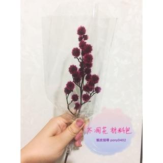 不凋花 乾燥花 材料包 白色小百合 紫色小百合 虎眼 紫星辰