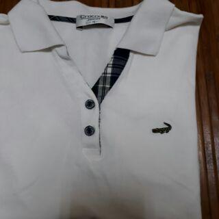鱷魚 polo衫 白色 女生 上衣 短袖