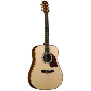 Fina FD-28 全單板 民謠吉他 木吉他 D桶 - 【他,在旅行】