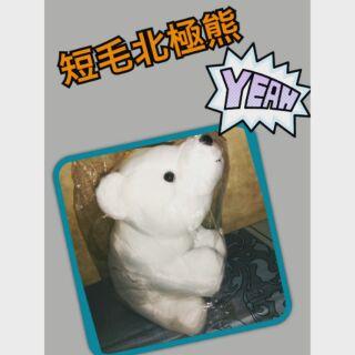 短毛北極熊填充娃娃