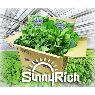 【低溫免運實施中】 有機認證最安心 有機安全無毒蔬果 有機蔬果 有機蔬菜 向陽健康家族 向陽健康蔬菜箱