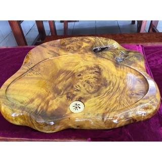 黃金樟 茶盤 原木茶盤