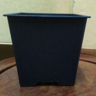 黑色塑膠四方盆 多肉植物 2吋盆 3吋盆 4吋盆