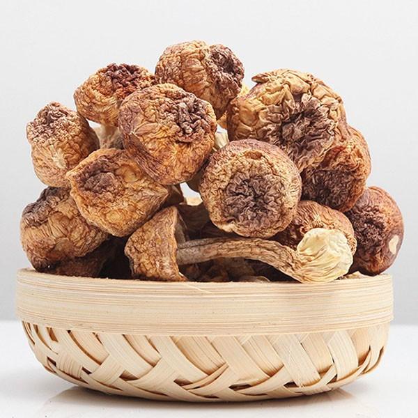 【蘑菇之王x姬松茸】膳食纖維/低膽固醇《R06》
