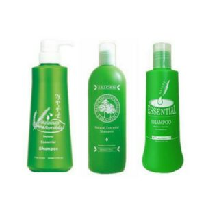 琦立髮品三款包裝茶樹洗髮精500ML(芝彩、NPPE、藝思晨)任選一