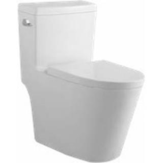 單體馬桶 雙龍捲式沖水 同TOTO 抗污釉面 省水 緩降馬桶蓋 (側按)