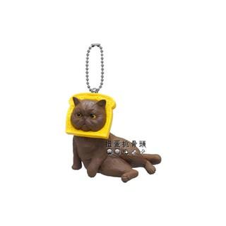 〖扭蛋挑骨頭〗單售 頭套貓 趣味cosplay貓 趣味頭套貓 麵包篇 臭臉貓 吐司貓 吐司 麵包 貓咪 貓 扭蛋