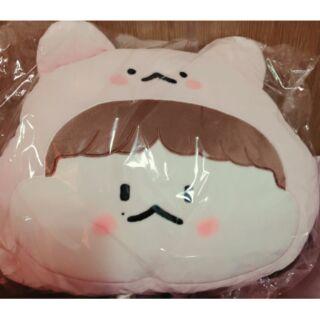 EXO BAEKHYUN 伯賢 hyunnary 單暖手枕
