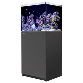 【~魚店亂亂賣~】以色列Red Sea紅海REEFER 170海水超白玻璃底部過濾魚缸60X50X50cm(黑色)