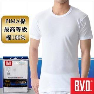 BVD 等級PIMA 棉絲光圓領短袖衫