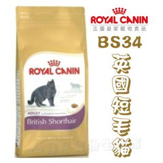 【心寵兒寵物生活館】ROYAL CANIN 法國皇家貓糧 BS34 英國短毛貓 2kg