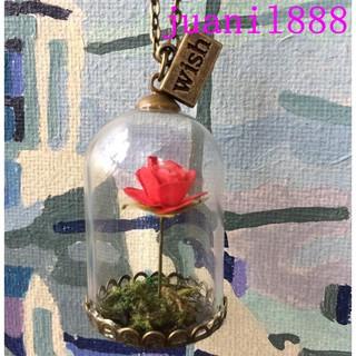 juanil888動漫周邊美女與野獸玫瑰創意禮物小王子玫瑰花玻璃瓶手工項鍊飾品
