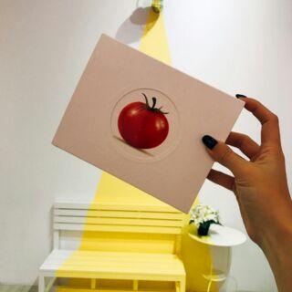 白色密碼 - 冰晶蕃茄