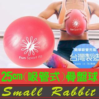 小白兔舞蹈休閒生活館-FS0052-小麗莎瑜珈極球25cm(吸管式-2顆)骨盤球/chi ball