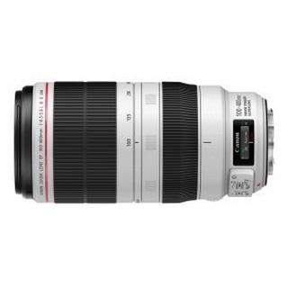 ◎王冠攝影社◎ Canon EF 100-400mm f/4.5-5.6L IS II USM 胖白 望遠變焦登錄贈好禮