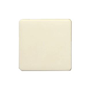 歐風蓋板 二連式 無孔 盲蓋