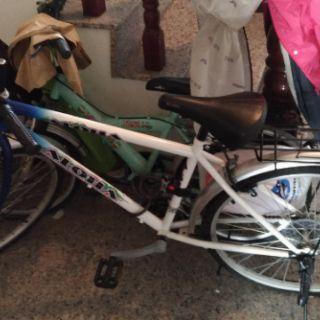 LUCKY幸福牌 ALOHA 變速自行車26吋 18速