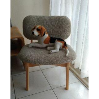 有情門 羅德列克椅